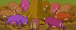 รูปนิทานชาดก สุกรปราบพยัคฆ์   วัฑฒกีสูกรชาดก ว่าด้วยหมูสู้เสือได้ด้วยสามัคคีกัน หน้าจบ