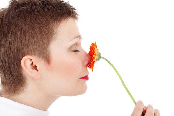 กลิ่นของต้องใจ,ที่นี่มีคำตอบ ฉบับมินิ เล่ม 4 รักนี้สีอะไร,บทความประจำวัน